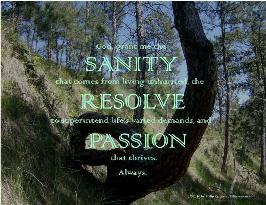 Sanity Prayer Graphic- Landscape JPG